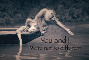 girl and monkey
