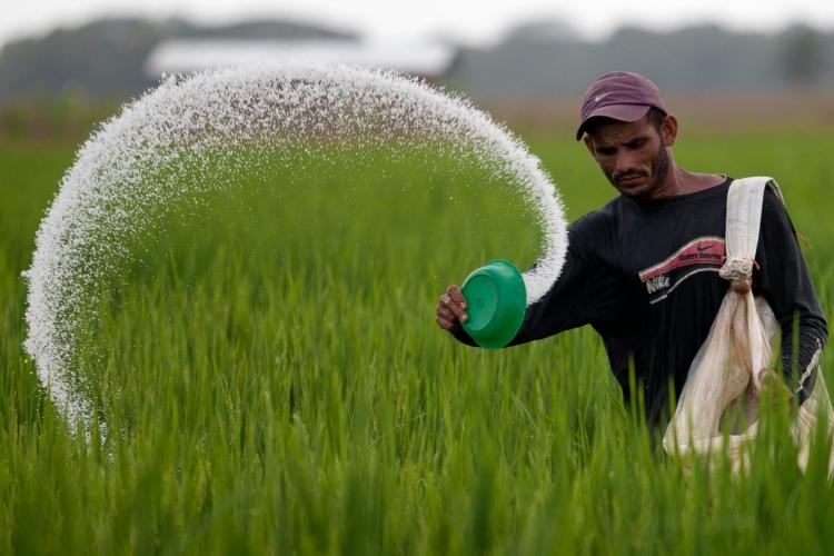 fertilizer failure